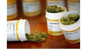 Cada vez son más los amparos judiciales presentados para poder utilizar cannabis con fines medicinales