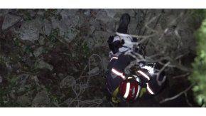 Los bomberos rescatan un perro que cayó en una cueva en Castellón.