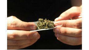 Sse pondrán en juego en referendos 161 iniciativas entre las que hay una cifra récord vinculada con el consumo y posesión de marihuana.