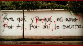 Por la letra de los graffitis y de las correcciones, se sospecha podría tratarse de la misma persona