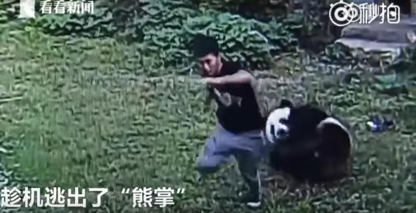 Ocurrió en un zoológico de China