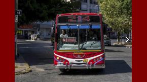 La 214, una de las líneas que recorre La Plata