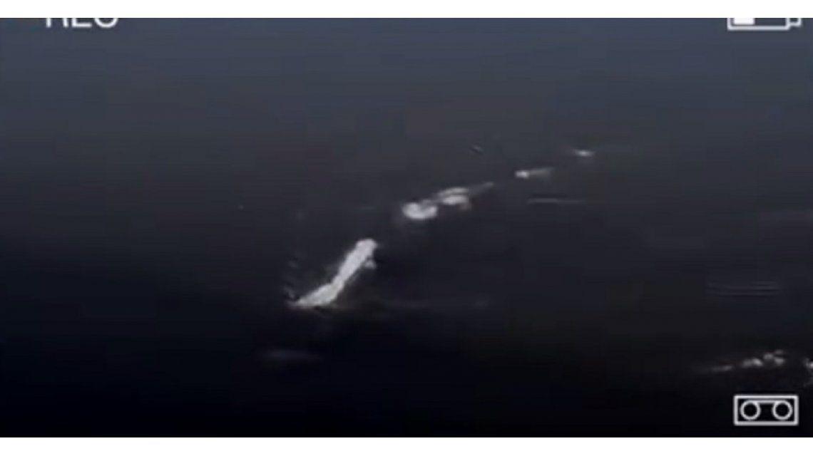 Monstruo en un lago de Alaska