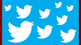 Twitter confirmó que despedirá al 9% de sus empleados