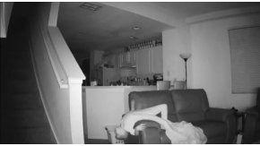 No sabía qué eran los ruidos a la madrugada y puso una cámara para ver qué sucedía