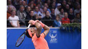 Del Potro  avanzó a las semifinales del ATP  de Estocolmo tras superar a Ivo Karlovic.