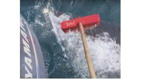 Un pescador tiene que ahuyentar a un tiburón con una escoba