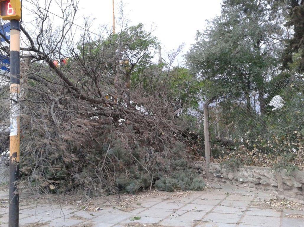 Violento tornado en Catamarca causó la muerte de un adolescente y graves destrozos
