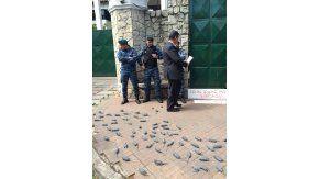 Una ingeniosa protesta en la puerta de Olivos