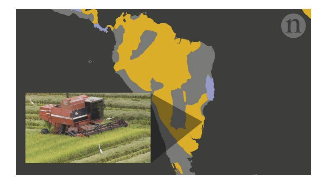 La provincia de Buenos Aires es buen terreno para el desarrollo sustentable