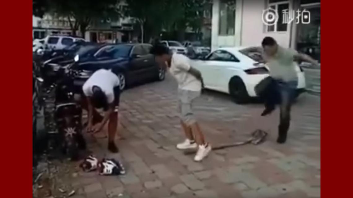 Imposible no reírse: quiso golpear en los testículos a su amigo y se partió la cabeza