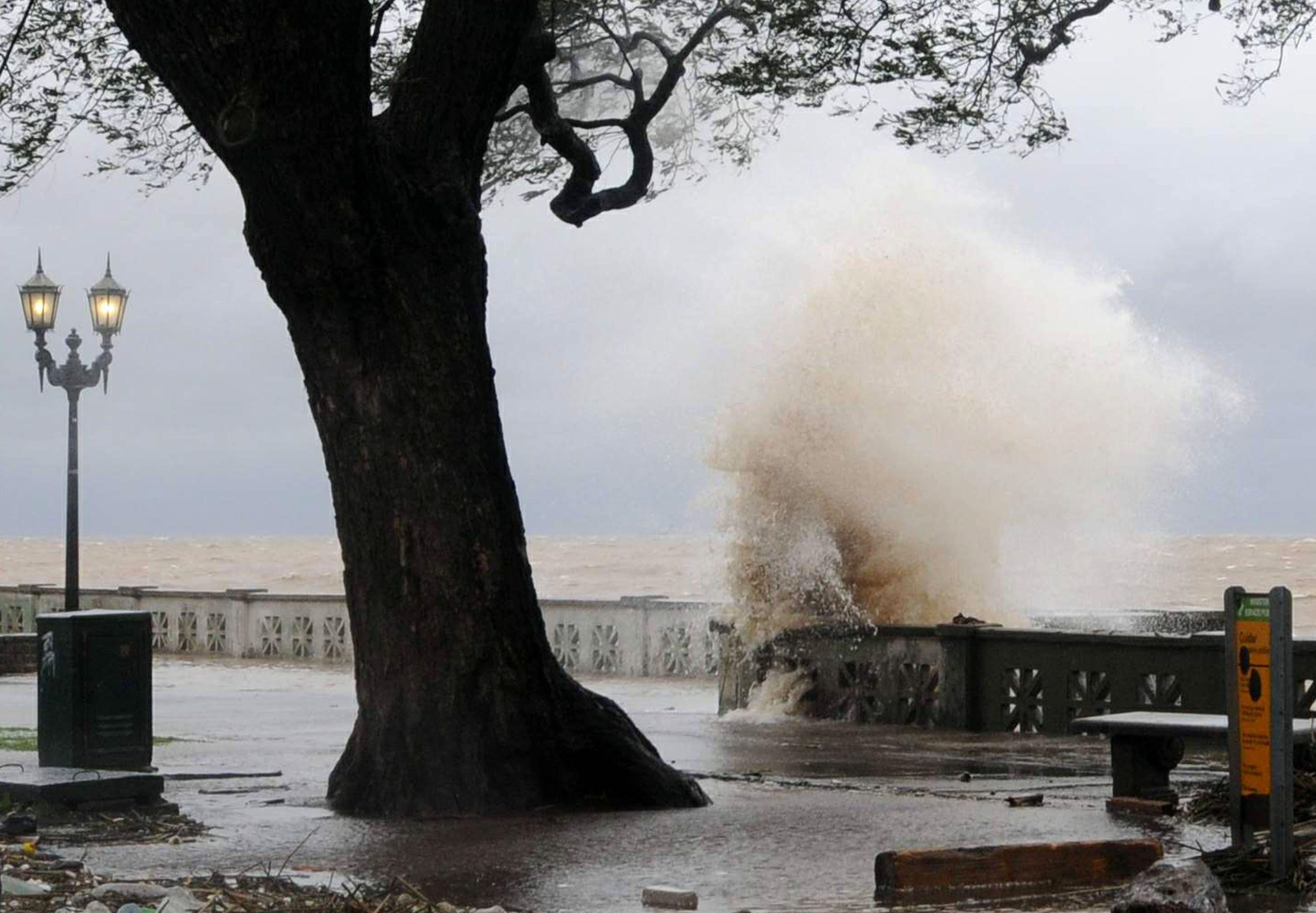 Rige un alerta por vientos intensos: éstas son las recomendaciones de la Ciudad