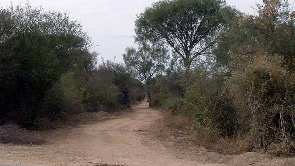 La odisea de dos nenes que salieron a cazar pajaritos y se perdieron en un monte