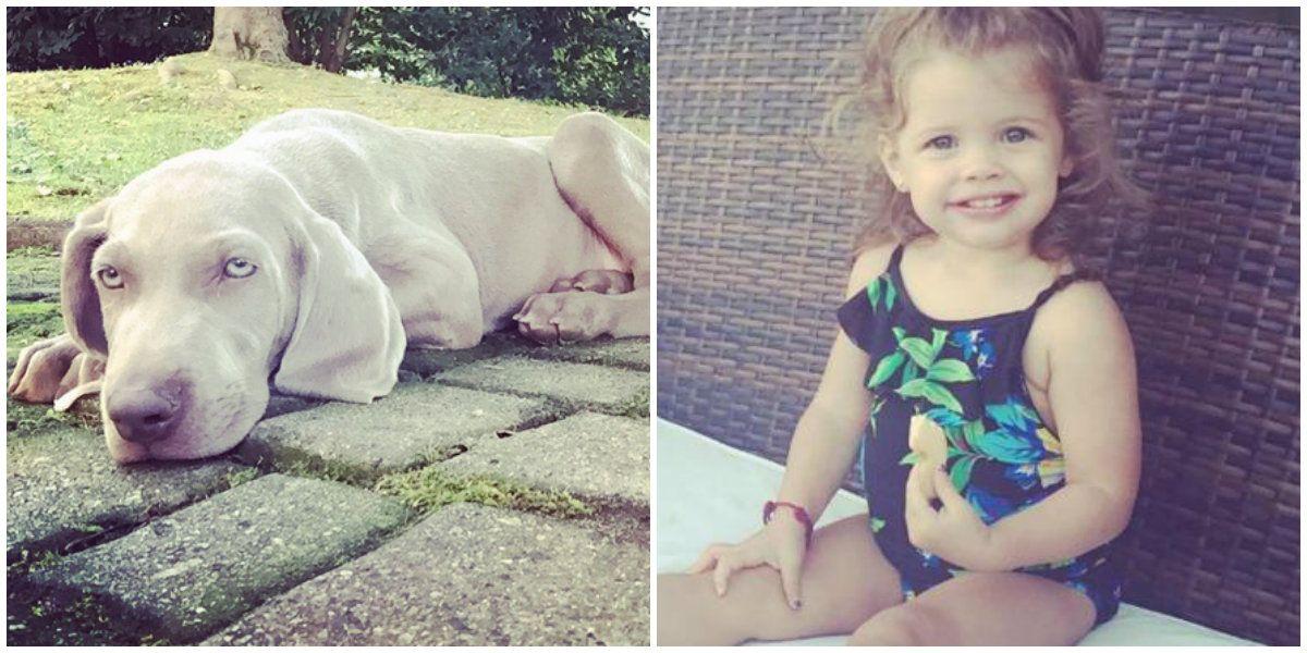 El tierno video de la hija de Wanda Nara con su nueva mascota