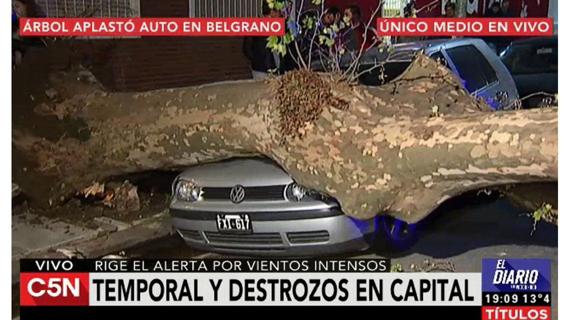 VIDEO: Así terminó un auto por la caída de un árbol en Belgrano