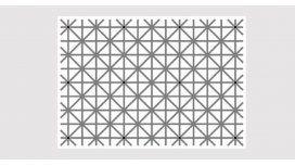¿Cuántos puntos negros contás en la imagen?