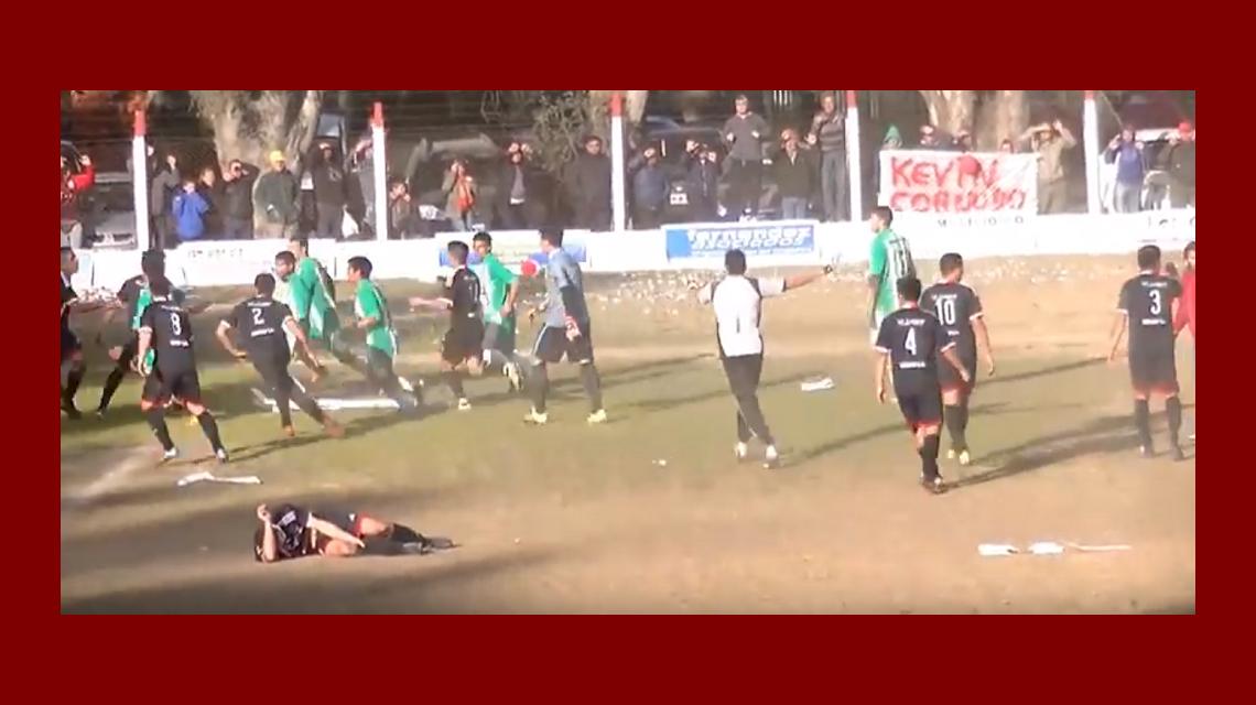VIDEO: Se calentó el partido, tiraron un armadillo y terminaron a las piñas
