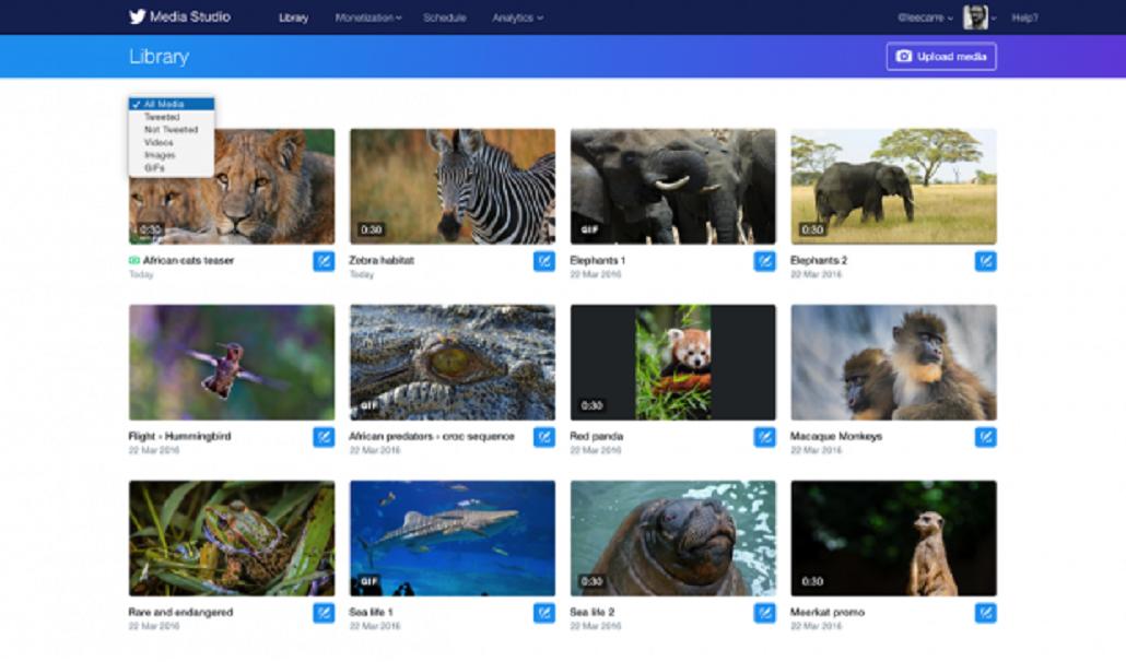 Twitter lanzó Media Studio, una herramienta para gestionar contenidos multimedia