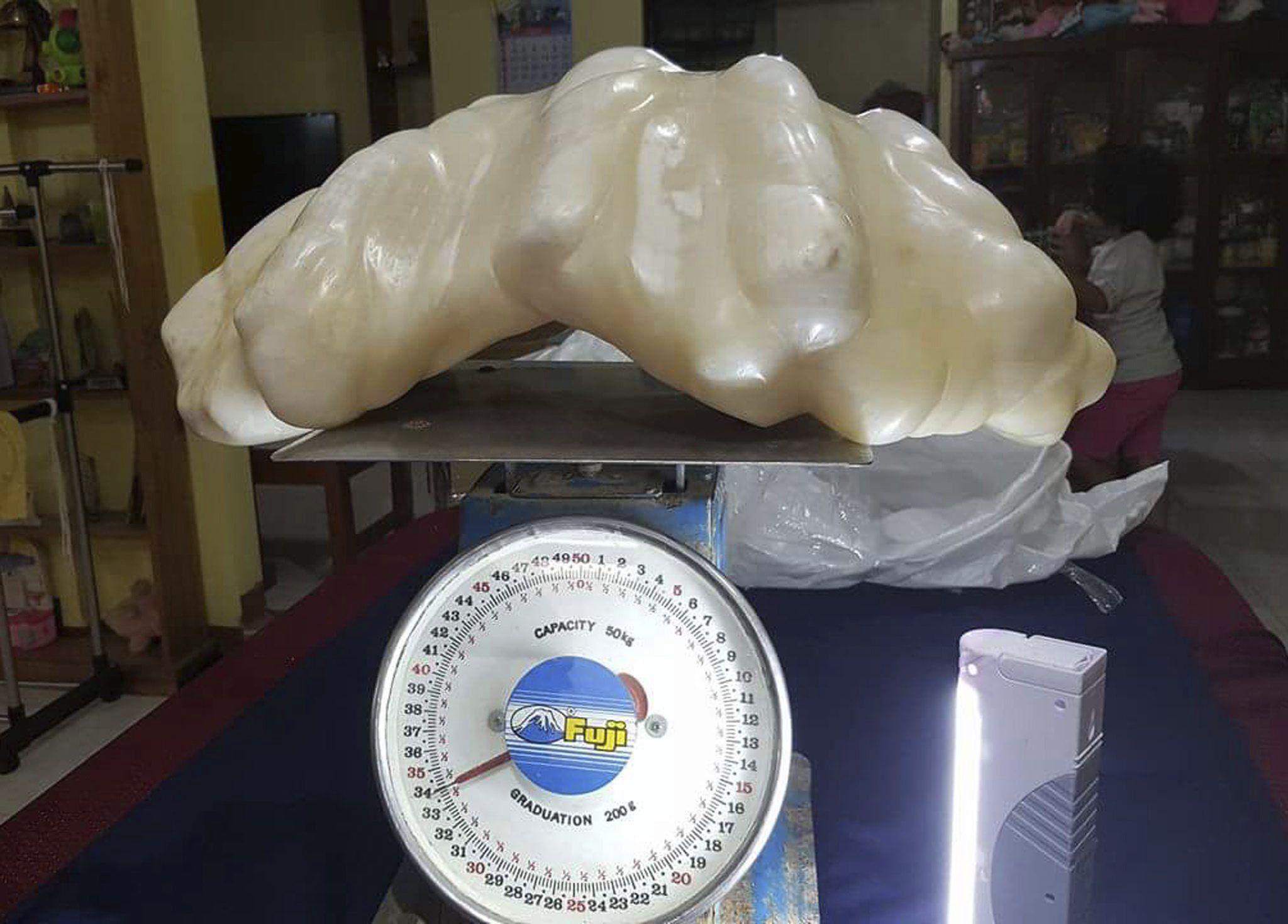 Un pescador halló la perla más grande del mundo y la guardó por 10 años