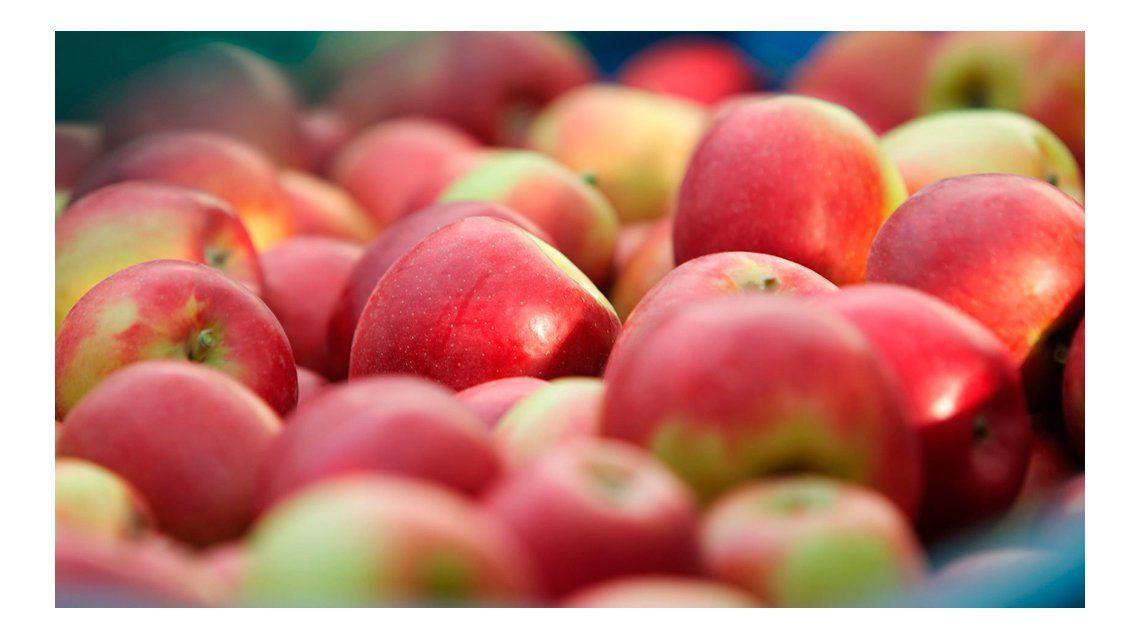 ¿Cuántas tortas o panqueques se pueden hacer con las manzanas que regalaron en Plaza de Mayo?