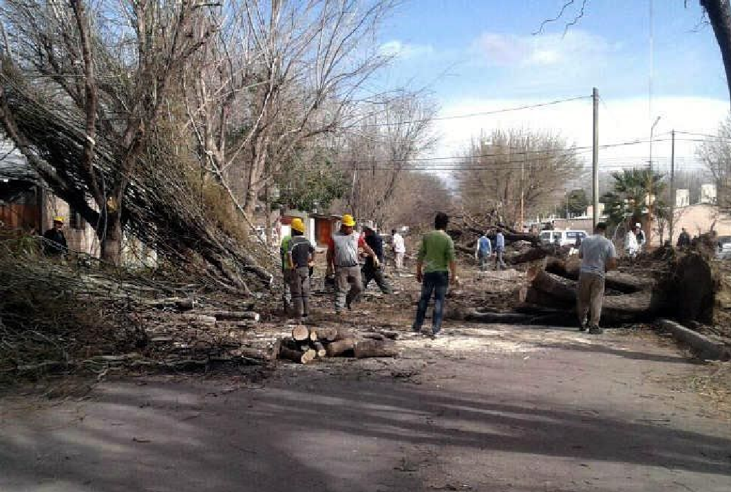 VIDEO: Mirá cómo sopló el viento Zonda en Mendoza