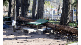 Mirá cómo sopló el viento Zonda en Mendoza