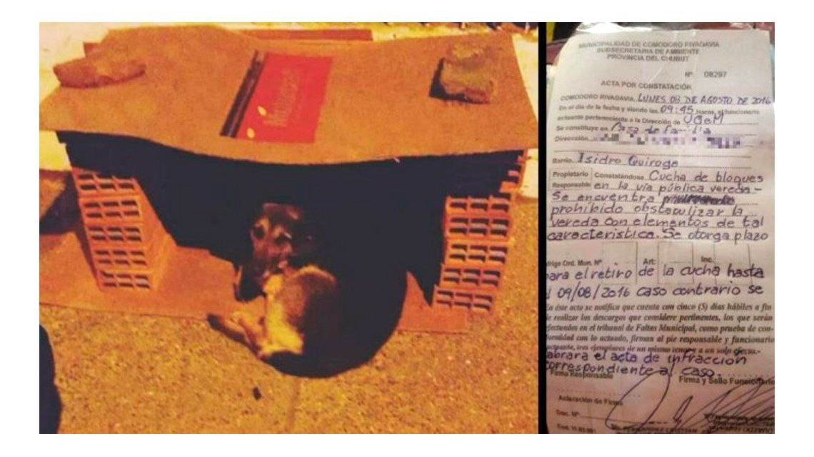Hizo una cucha para los perros y la Municipalidad lo intimó para que la desarme