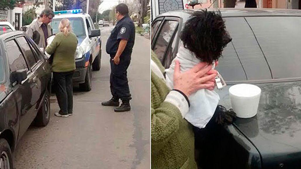 Liberaron a un perro que estuvo cinco días encerrado en un auto