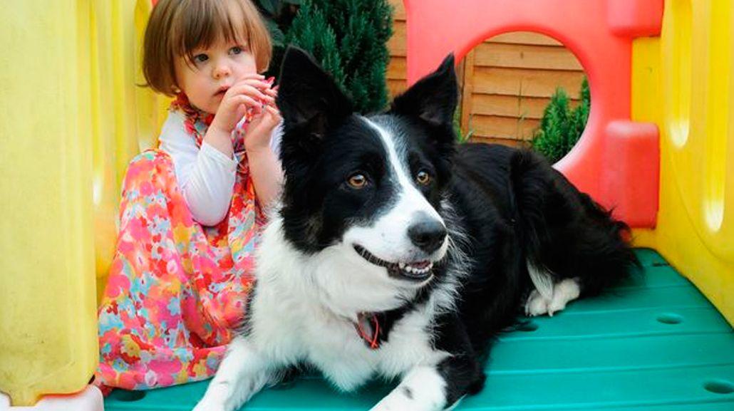 Gracias a su perra, descubrieron que su hija tiene cáncer