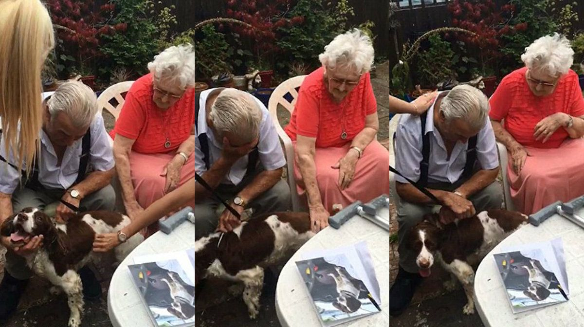 Una nieta le regaló un perro a su abuelo y su reacción fue pura ternura