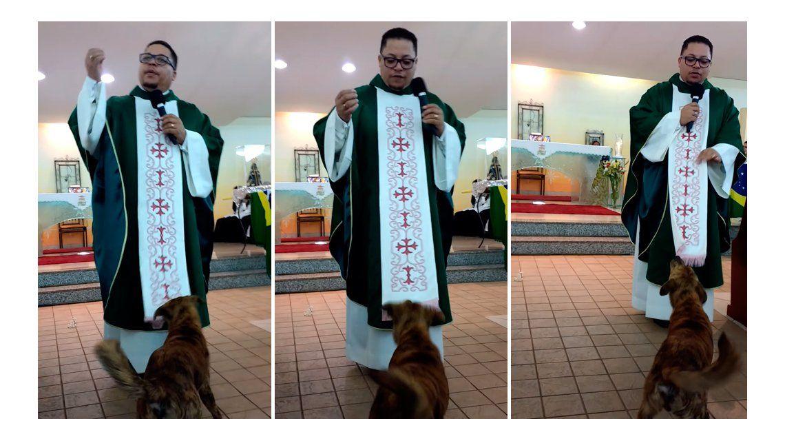 VIDEO: mirá al perro cristiano que interrumpe una misa para jugar con el cura