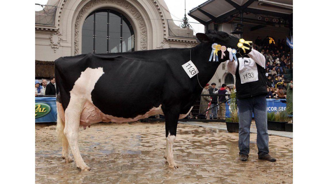 Por la crisis en la producción lechera, La Rural pierde un clásico
