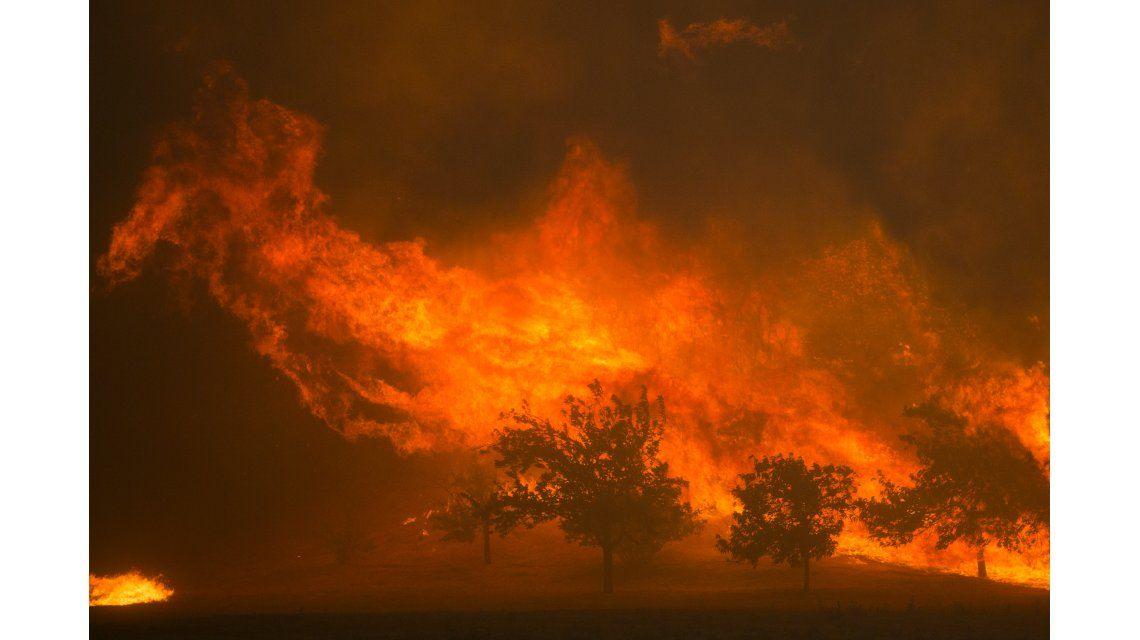 Sand Fire: incendio fuera de control en Los Ángeles afecta a 8 mil hectáreas