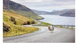 Una oveja filma paisajes de las Islas Faroe en 360°