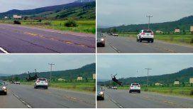 Impresionante choque: un conductor embistió un alce y lo hizo volar por el aire