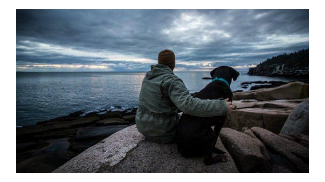 Le diagnosticaron un cáncer terminal a su perro y decidió sacarlo a pasear por última vez