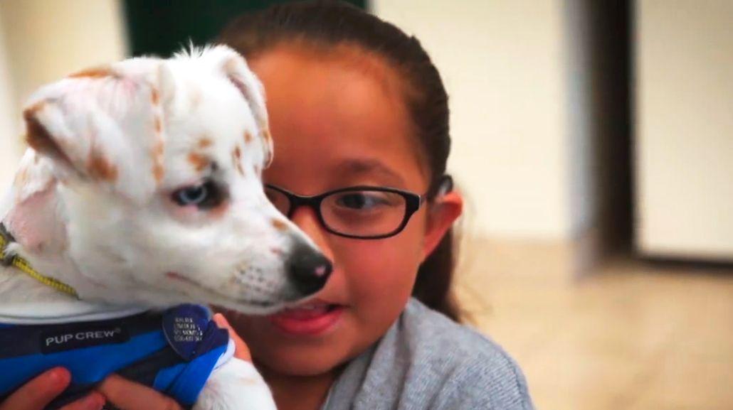 La tierna historia de una nena y su cachorro, ambos sordos, que se comunican por lenguaje de señas