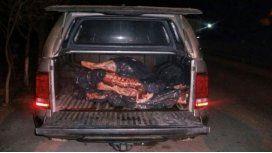 Llevaban 250 kilos de carne arriba de una camioneta del sindicato de petroleros