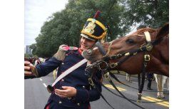 La historia detrás de la selfie del granadero y el caballo que causó furor