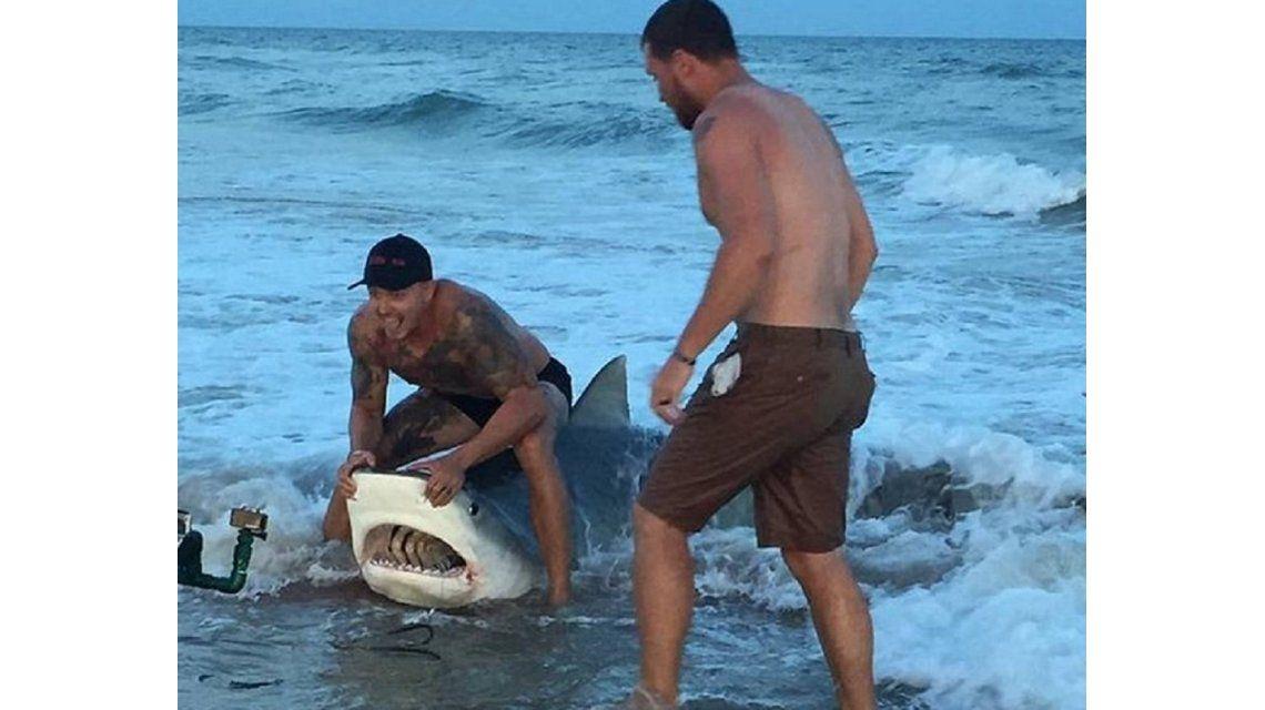 Corajudos: le sacaron un anzuelo a un tiburón y lo devolvieron al mar