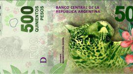El yaguareté del billete de $500 está en peligro de extinción: quedan 220