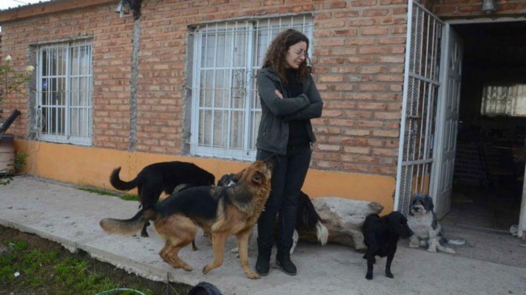 Habló la dueña de los perros que se matan entre sí: Amo a los animales