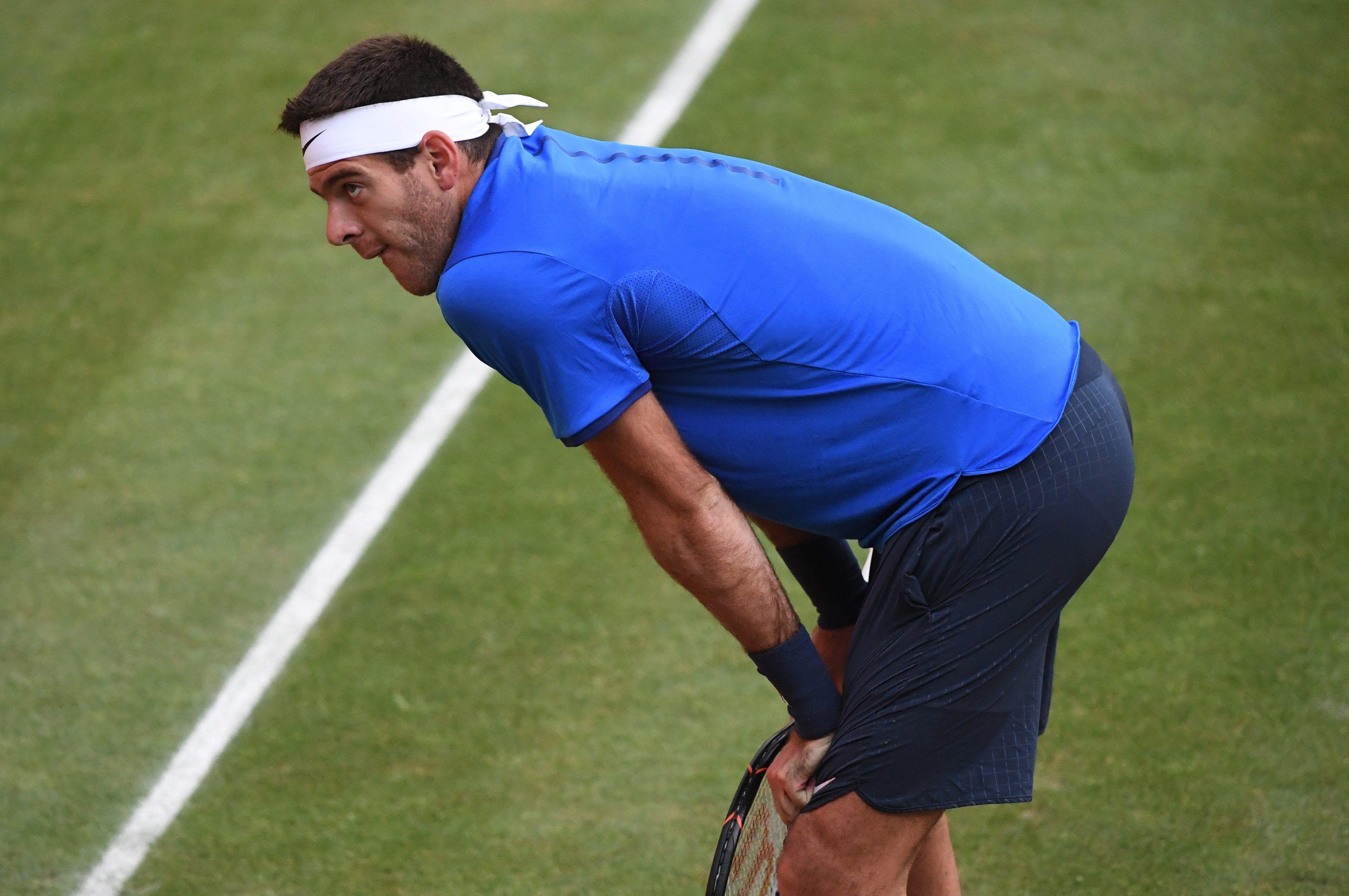 Sigue escalando: Del Potro trepó 57 puestos en el ranking ATP