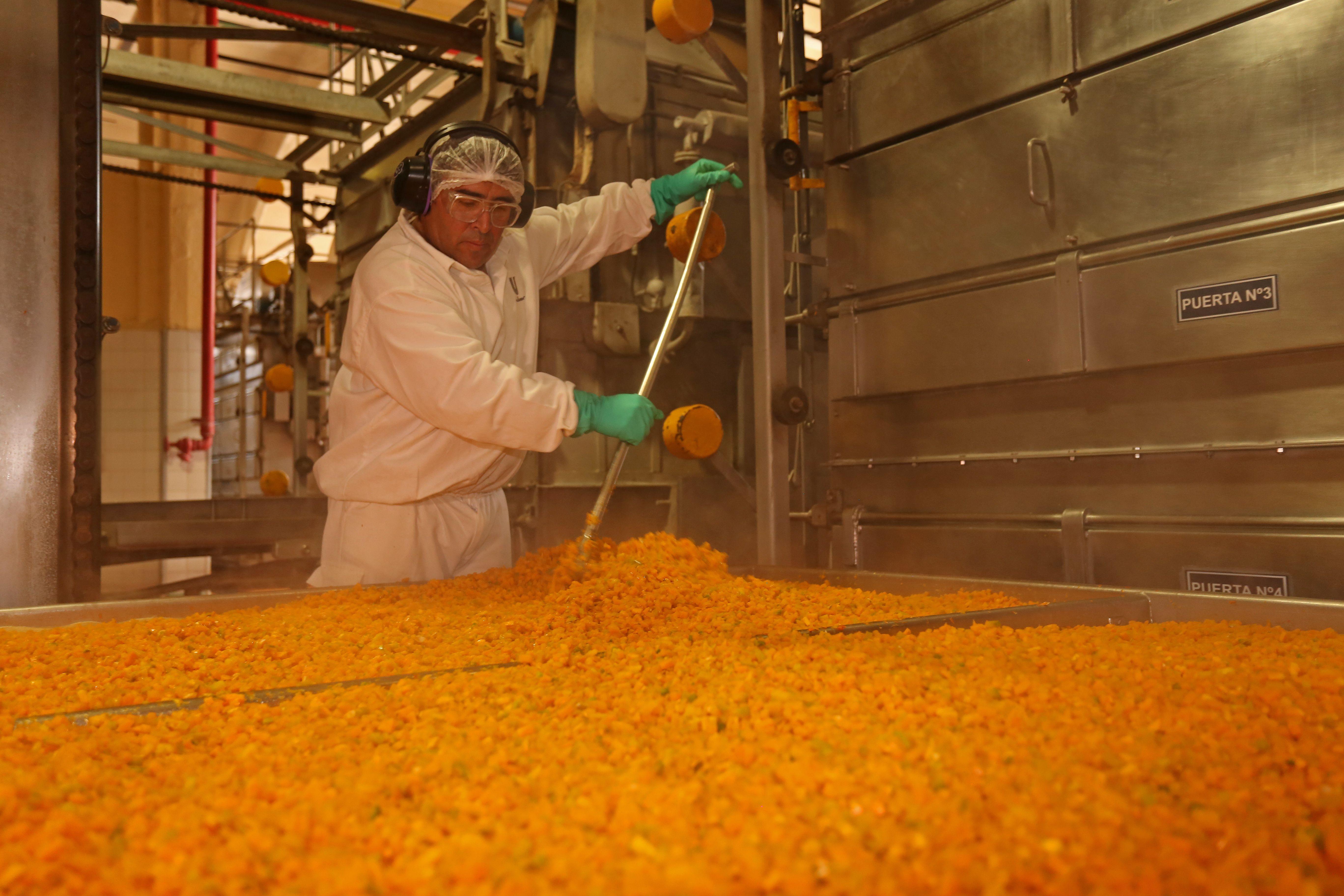 Alerta Verde: conocé el modelo de producción sustentable de Knorr
