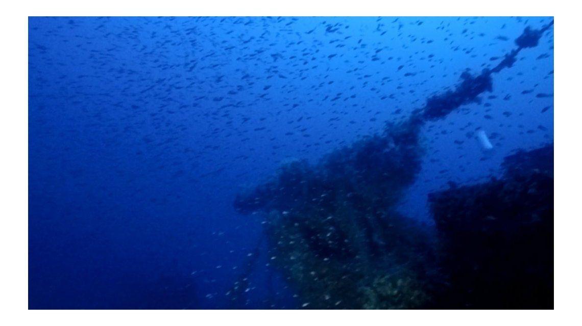 Hallan un submarino de la Segunda Guerra Mundial con toda su tripulación