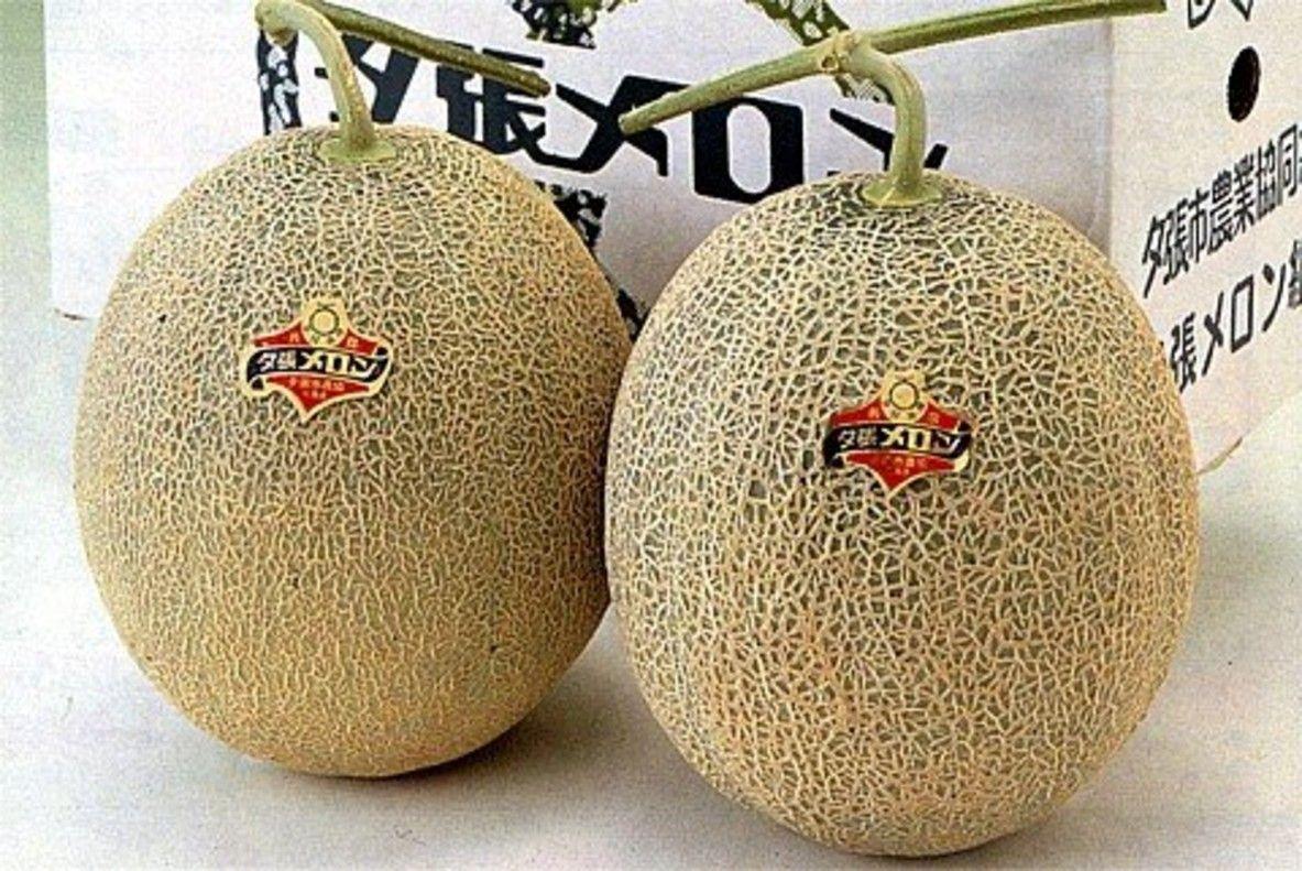 Los melones más caros del mundo: vendidos en una subasta por 24.500 euros
