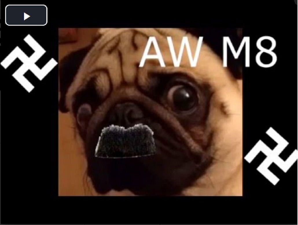 Lo arrestaron por enseñarle a su perro Pug a hacer el saludo nazi