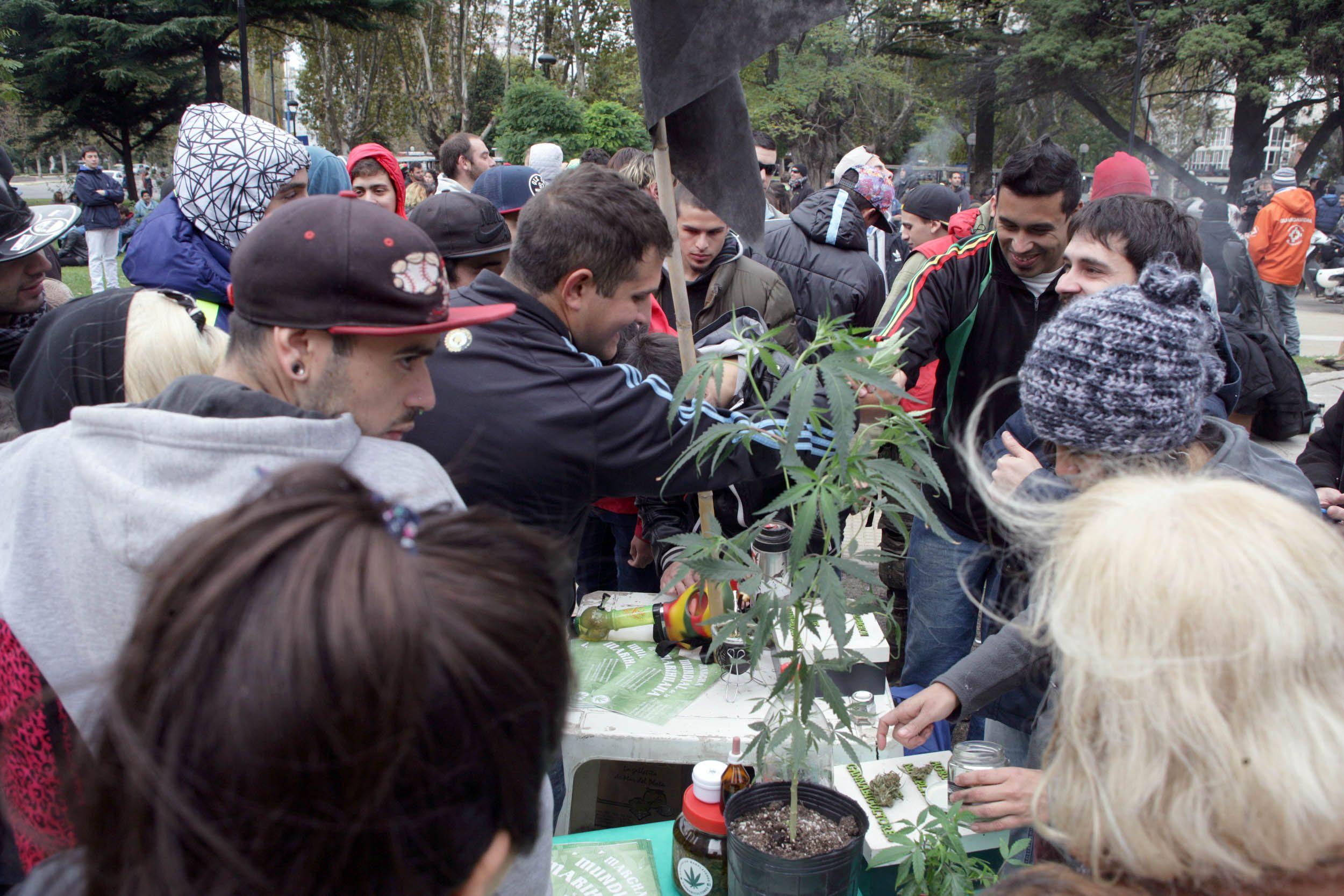 Las fotos de la marcha mundial de la marihuana en todo el país
