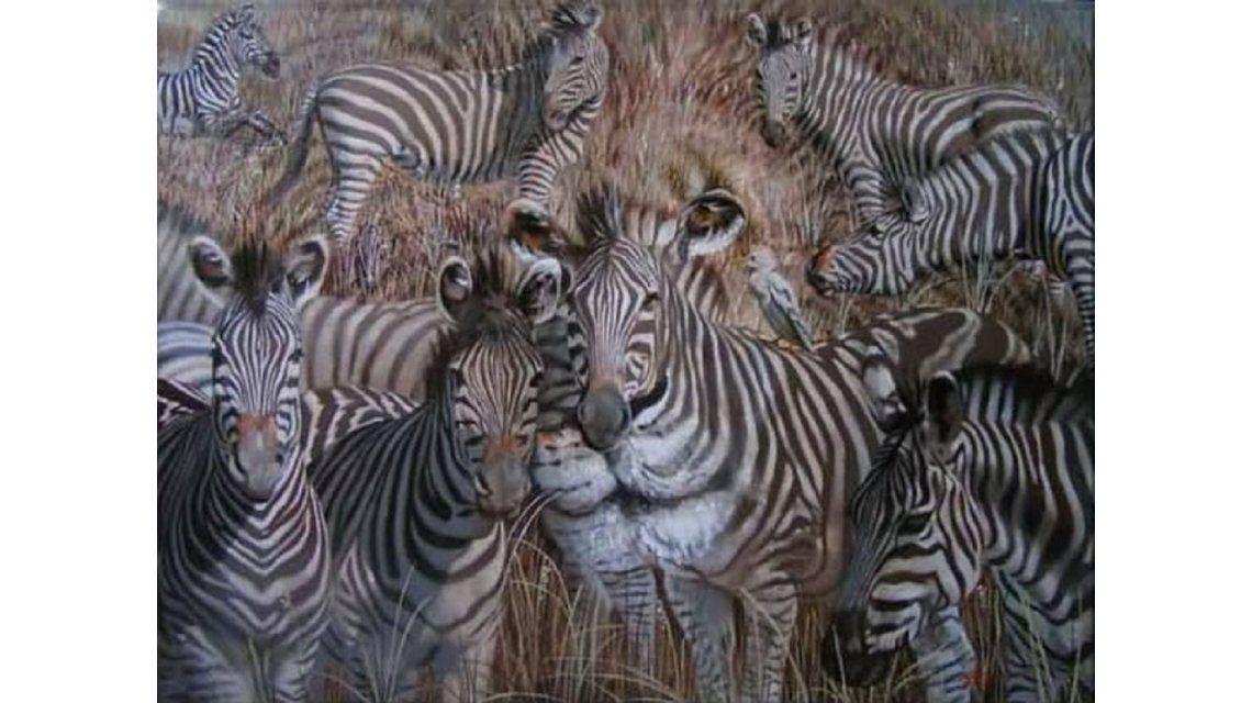 ¿Qué animal está escondido entre las cebras?