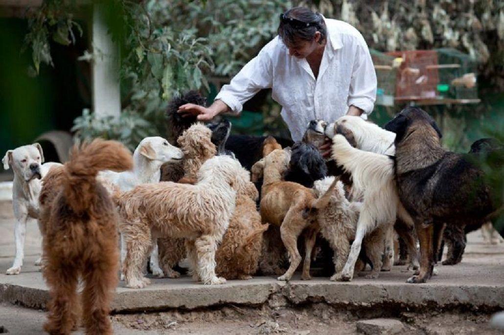Realizan una jornada de adopción de mascotas en Parque Rivadavia
